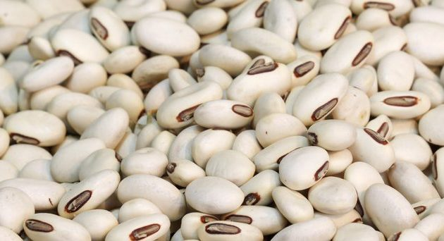 Different Types of Beans You Can Eat
