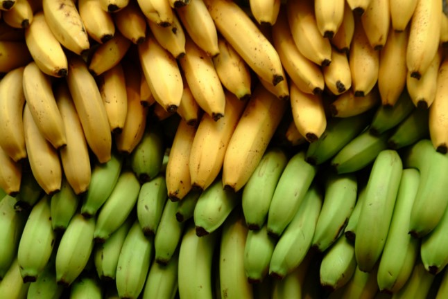 6 Different Types of Bananas