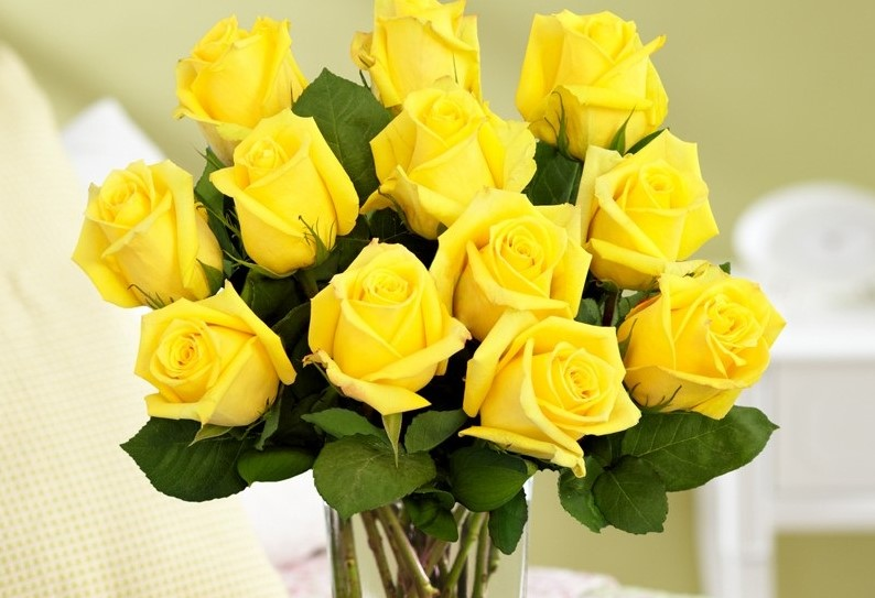 Top 25 most yellow flowers in the world meaning seasonal and beautiful yellow flowers yellow roses mightylinksfo Gallery