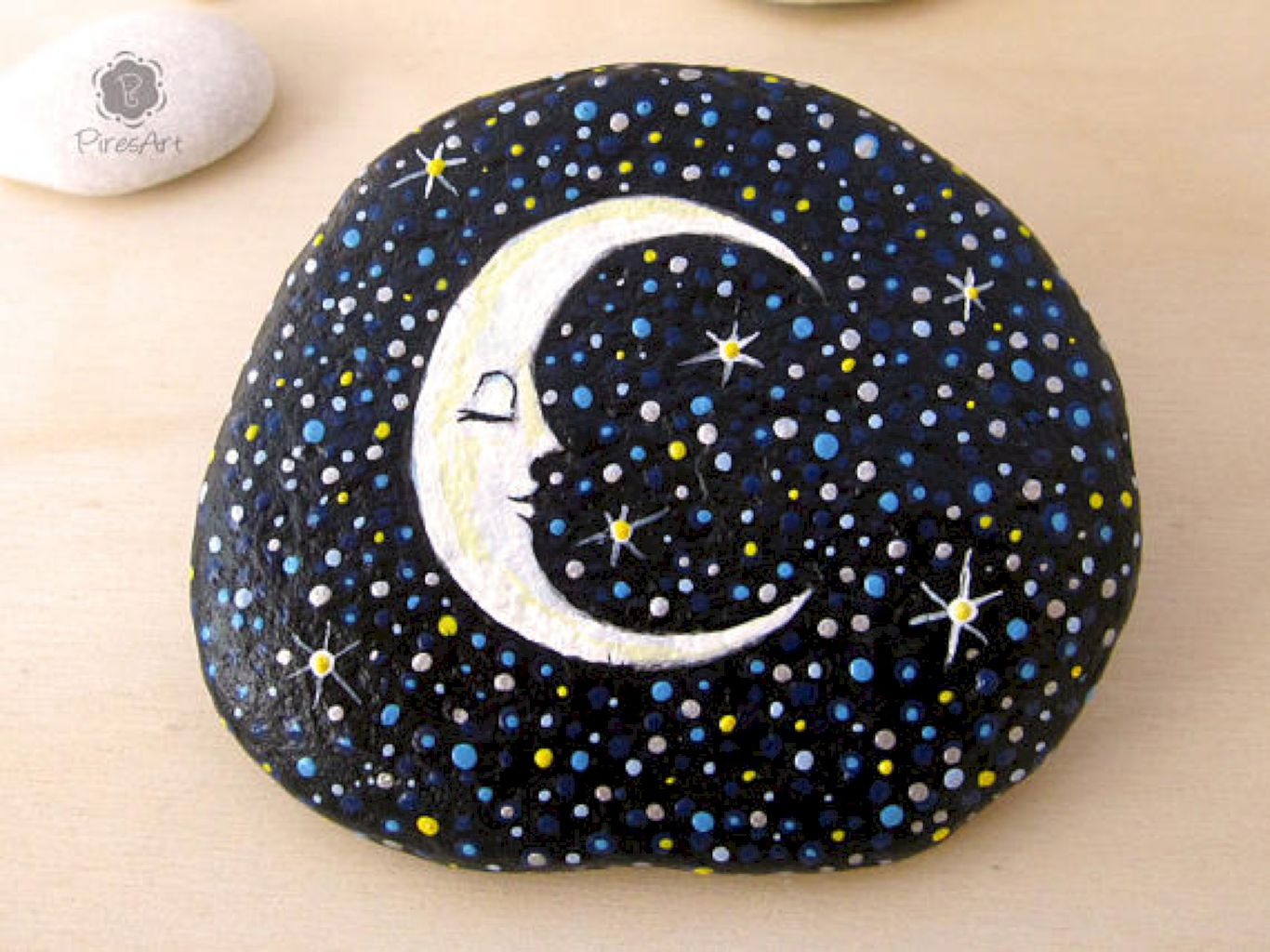 How To Paint Rocks Step By Step Painted Rock Ideas Painting Ideas Projects
