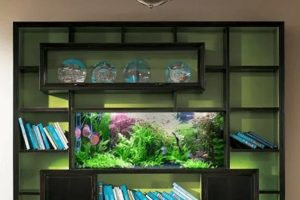 5 Amazing Aquarium Furniture Ideas