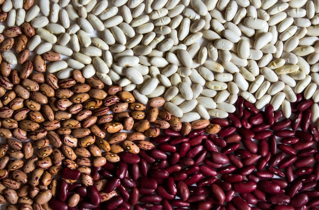 4 Different Types of Beans You Can Eat
