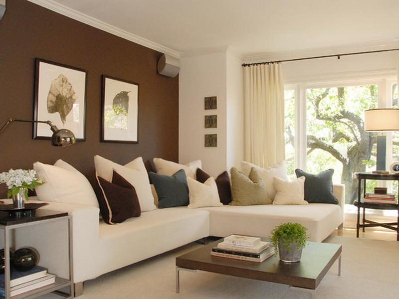 brown-color-contrast-wall-home-decoration-colour-paint-homes ...