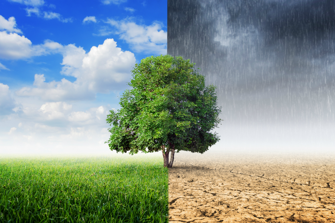Different types of climate