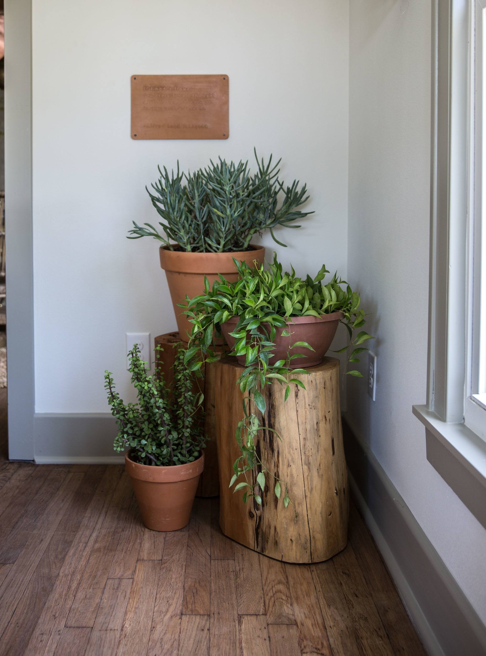20 Inexpensive DIY Plant Stand Ideas on House Plant Stand Ideas  id=97214